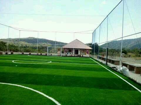 rumput sintetis lapangan bola